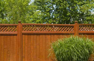Wood Fence Maintenance
