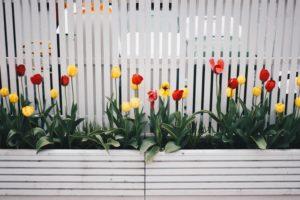 Residential Fence Design Ideas Hercules Fence Newport News