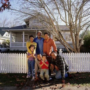 alternatives to chain link fences