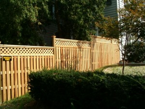 Wood Fence Cleaning Tips