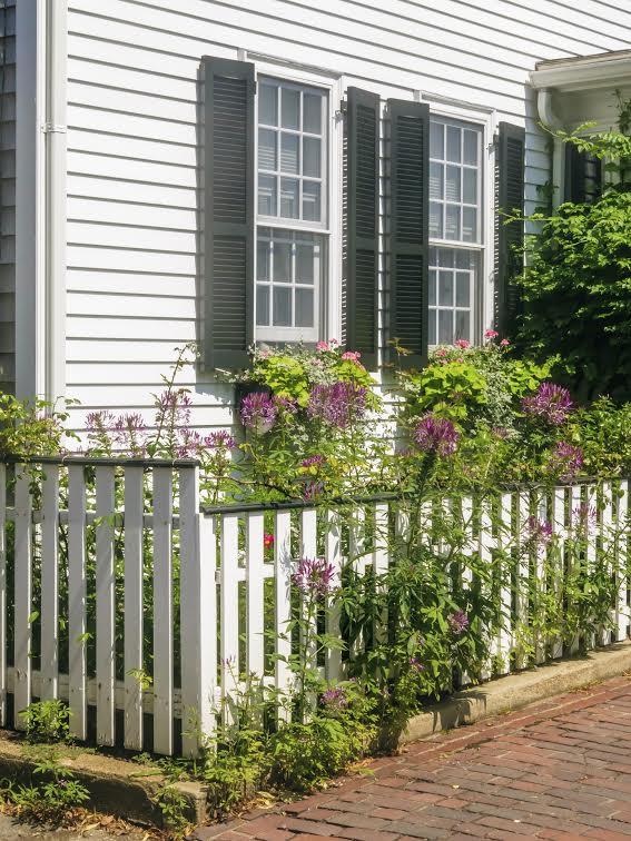 Fence Company Virginia