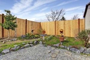 privacy fence in a small backyard