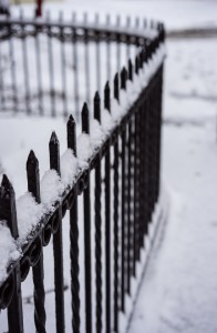 Iron fence winter