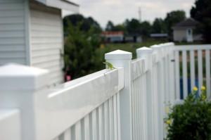 vinyl-fence-smithfield-virginia